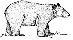 black bear free coloring pages art coloring pages