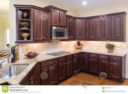 color schemes for kitchens with dark cabinets dark kitchen