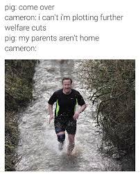 David Cameron Memes - david cameron and a pig fullcommunism