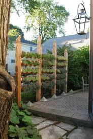 gartengestaltung sichtschutz sichtschutz im garten beleuchten pflanzen landschaft garten