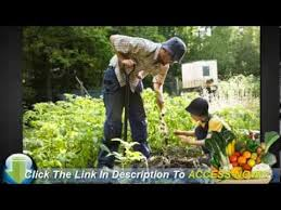 how to layout a backyard vegetable garden youtube