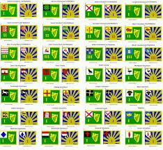 Gold Fringed Flag Meaning Sam U0027s Flags 2015