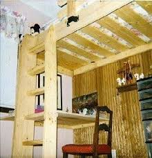Build Loft Bed Ladder by 337 Best Beds Images On Pinterest 3 4 Beds Loft Beds And