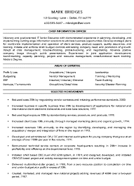 It Executive Resume Examples by Cio Technology Executive Resume Example Sample