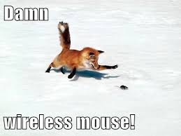 Wireless Meme - damn wireless mouse funny mouse meme image