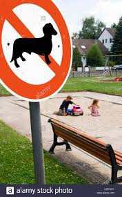 Sign Stands by Dog No Parking Sign Stands Before A Children U0027s Playground No Pr