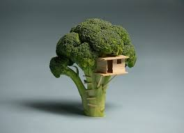 sweet tiny broccoli house top quality wallpapers