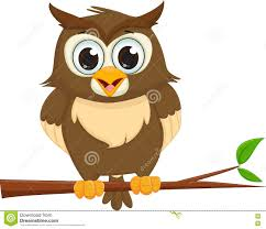 owl on tree branch stock photography image 33794092
