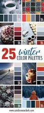 matching color schemes best 25 winter color palettes ideas on pinterest winter colors
