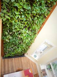 Indoor Garden Wall by Design Trend Living Walls Hgtv