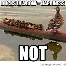 Happiness Is Meme Generator - ducks in a row meme generator