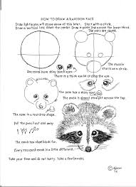 how to draw worksheets for the young artist how to draw a raccoon