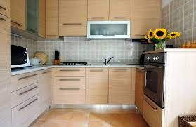 Kitchen Cabinet Door Design Ideas by Kitchen Cabinet Door Designs Marvelous Beautiful Design Ideas