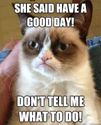 Have A Good Day Meme - she said have a good day don t tell me what to do grumpy cat