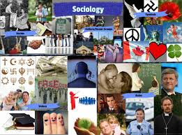 Types Meaning Socialisation The Meaning Features Types Stages And Importance