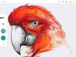 new adobe illustrator draw app now available for ipad iclarified