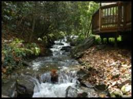 Timberwolf Creek Bed Breakfast Black Bear Cottage In The Woods Of Maggie Valley Prices U0026 Guest