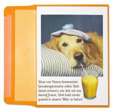 gute besserung spr che kostenlos genesungswuensche kollegen lustig hund burnout gute besserung