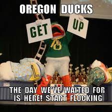 Oregon Ducks Meme - 130 mejores im磧genes de oregon ducks art en pinterest