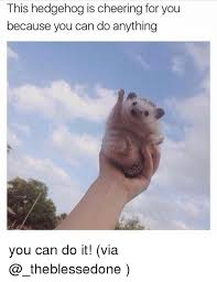 Meme You Can Do It - 25 best memes about you can do it you can do it memes
