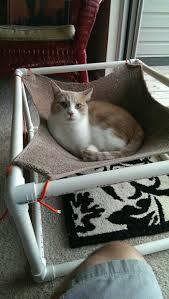 Katze Schlafzimmer Ja Bett Nein Die Hängematte Für Katzen Ist Ein Absoluter Hit Archzine Net
