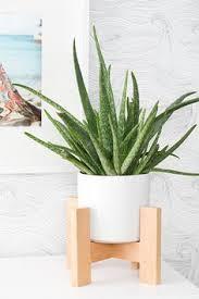mavis cross planter modern plant stand diy plant stand and plants