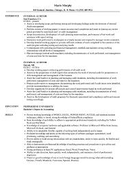 auditor resume exles auditor resume sles velvet