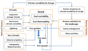 Wildfire Tools by Forests Free Full Text Tools For Assessing The Impacts Of