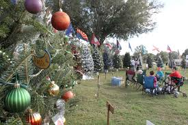53 Christmas Trees Bring Joy And Glee Tbo Com