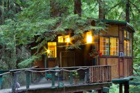 redwood treehouse santa cruz mountains on airbnb 125 night