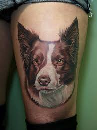 pet dog face tattoo cool tattoos online