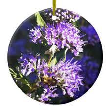 lavender bush ornaments keepsake ornaments zazzle