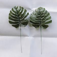 compare prices on evergreen tree leaves online shopping buy low