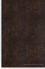 Papier Peint Marron Glace by