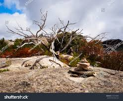 wood sculptures on granite plateau stock photo 169435904