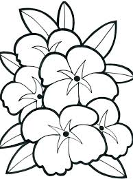 printable coloring pages of pretty flowers beautiful flower coloring sheets kids coloring free printable