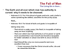 fall of and salvation in jesus