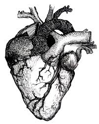 drawing of heart free download clip art free clip art on