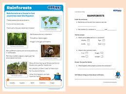 rainforests oddizzi