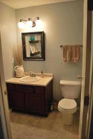 Color Ideas For Small Bathrooms Mesmerizing Dark Small Guest Bathroom Color Ideas Bathroom Guest