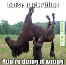 Horse Riding Meme - funniest memes horse back riding check more at http www