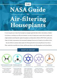 infographic the nasa guide to air filtering plants recoil offgrid