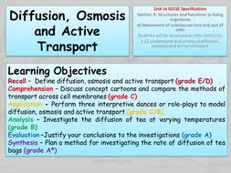 diffusion osmosis and active transport by freddyhillman