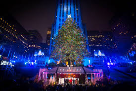 2016 rockefeller center tree with bonus tree in