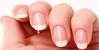 nail polish latest news information pictures articles
