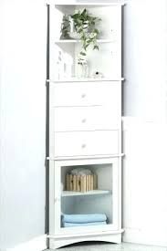 Bathroom Corner Shelving Unit Bathroom Corner Shelves Engem Me