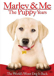Marley and Me Puppy Years (2011) [Latino]