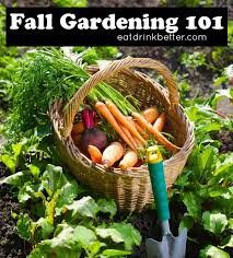 garden guides for your vegetable garden
