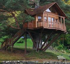 how to build a tree house starts with these 10 tips to success