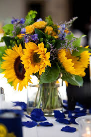 let u0027s learn about flowers sunflower edition planning it all